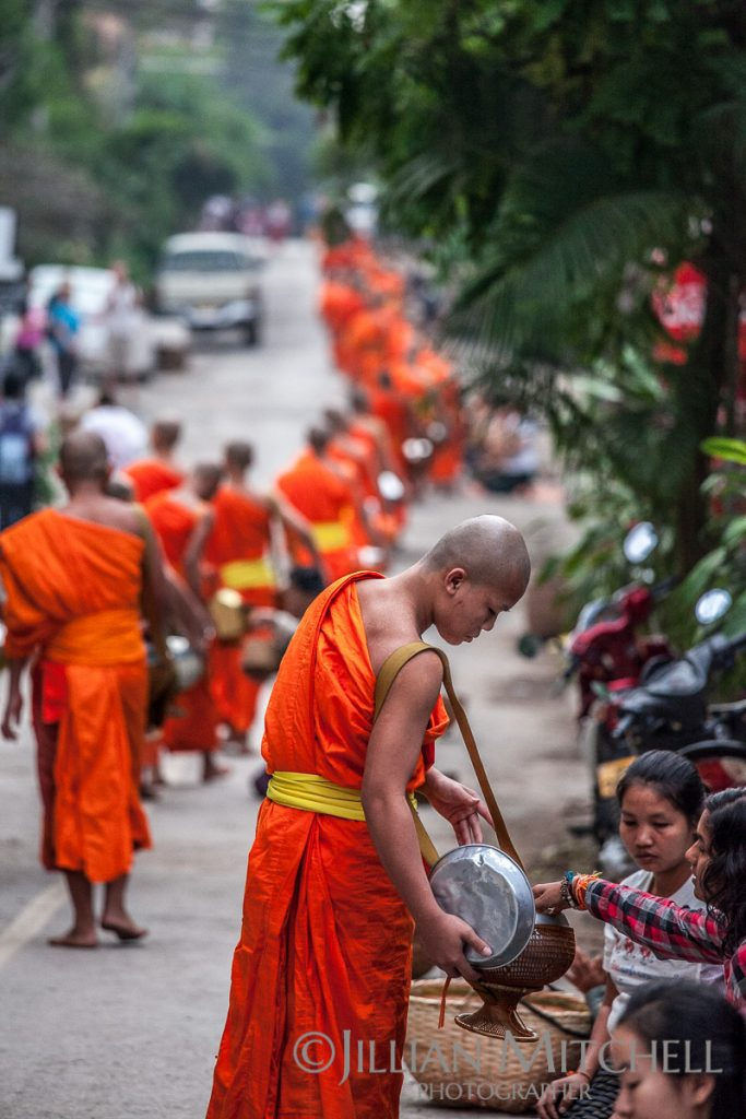 Each morning in Luang Prabang, Laos Buddhist monks carry out the morning alms procession.